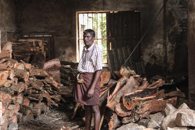 Worker in tea factory Vagamon, Kerala, India