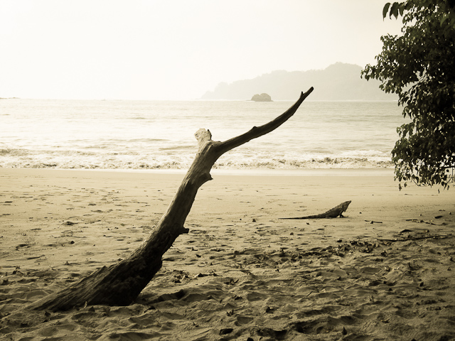 Manuel Antonio Beach, Costa Rica