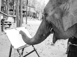 Elephant Painting at Thai Elephant Art Gallery