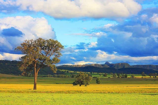 Beautiful Australia countryside - rural