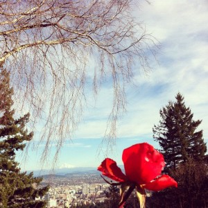 "rose mthood 300x300 Get Cultured: Portland "" A Local Guide to This Foodie Town"