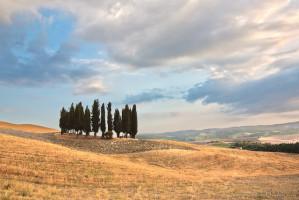 Tuscany Landscape - An Italian Wine Guide - Chianti