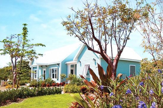 cotton tree cayman islands cottage