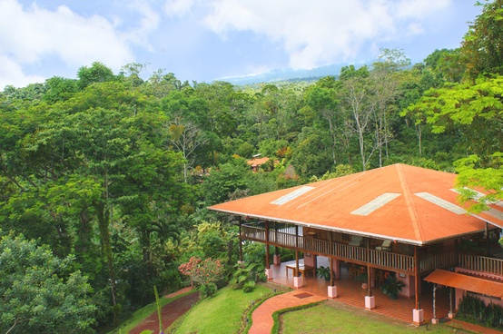 Finca Luna 1 An Enlightening Farmstay Deep in the Costa Rican Rainforest