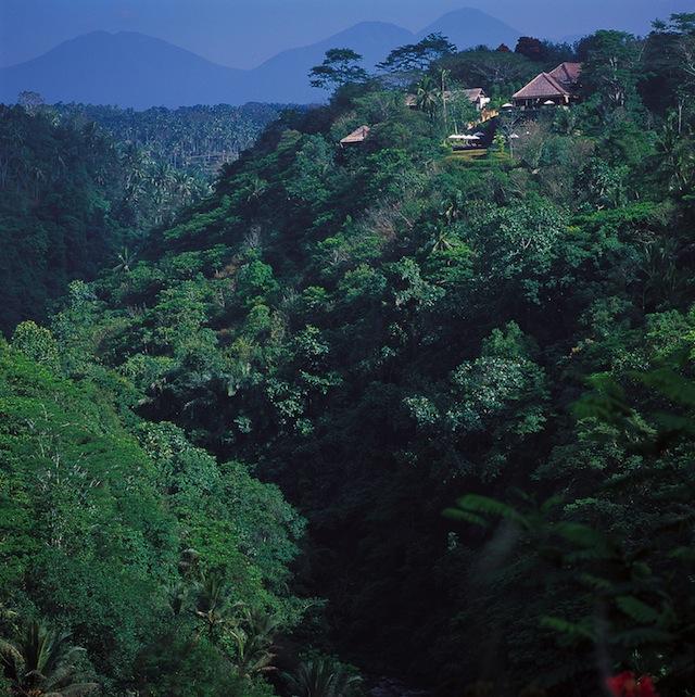 alilaubud hillside ayung river Get Cultured: Ubud   Exploring Balis Bucolic Artisan Hub