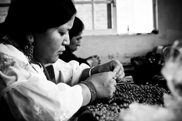 Andean Collection Artisans
