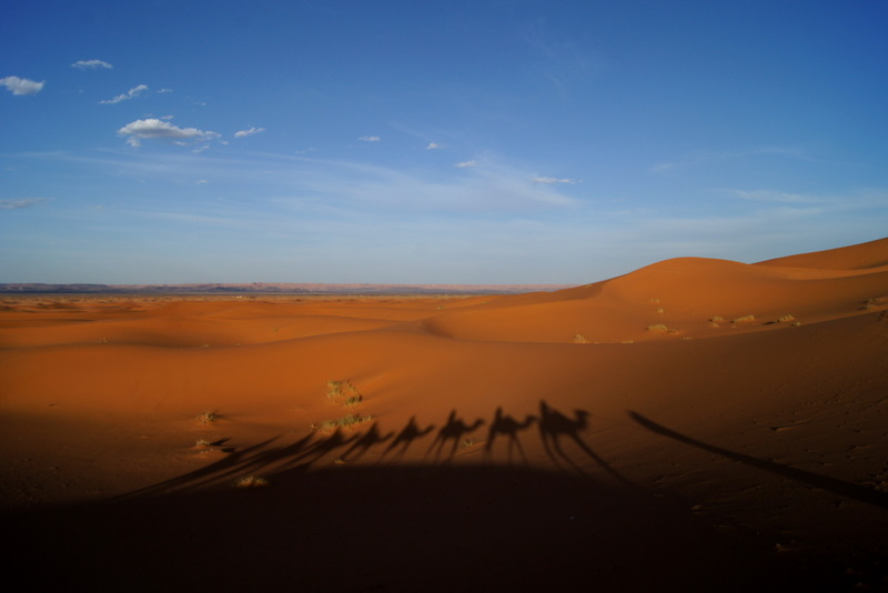 Saharan camel ride Beyond the City and Into the Dunes, A Photo Essay of The Moroccan Sahara