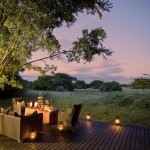 phinda forest lodge  150x150 SHOP TRAVEL & CULTURAL TOURS