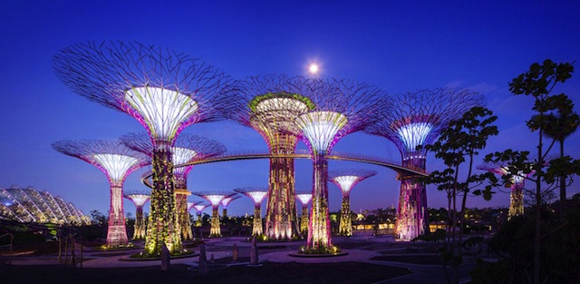 Gardens by the Bay Supertrees This Living Park May be Singapores Most Brilliant Eco Architectural Gem Yet