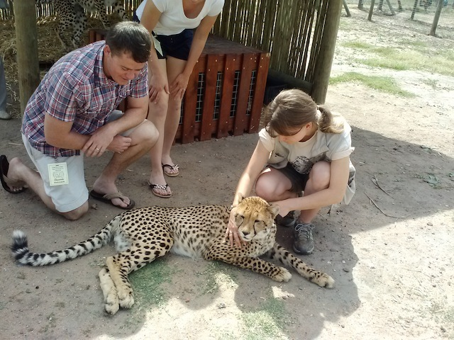 Cheetah Sanctuary