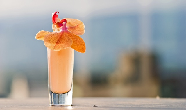 ... shaking up refreshing cocktails perfect for those sultry summer days