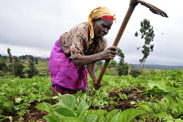 women farmer africa 14 Organizations Around the World Empowering Women to Achieve Food Security