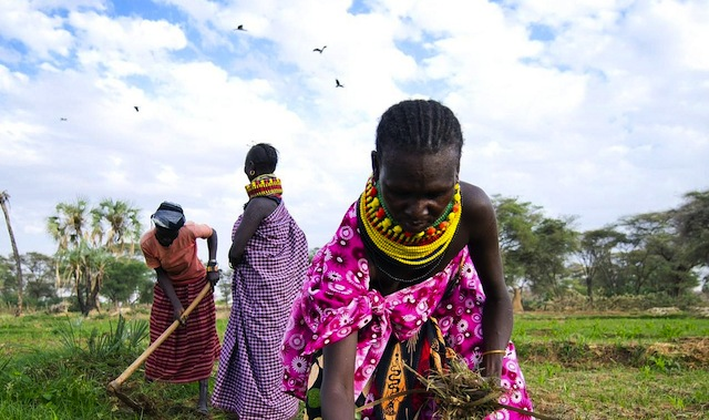 women farmer 14 Organizations Around the World Empowering Women to Achieve Food Security
