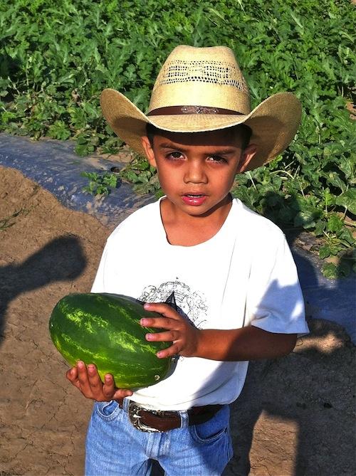 Mexico farmers