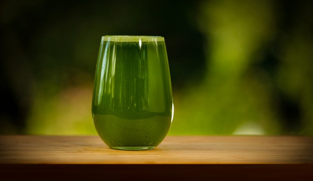 green juice 10 Juicing Recipes for Cleansing the Body of Toxins