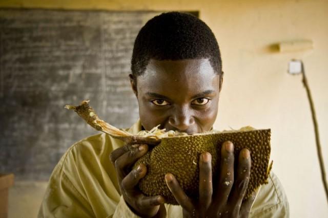 Worker Enjoys Fresh Jackfruit on Break, Central Uganda