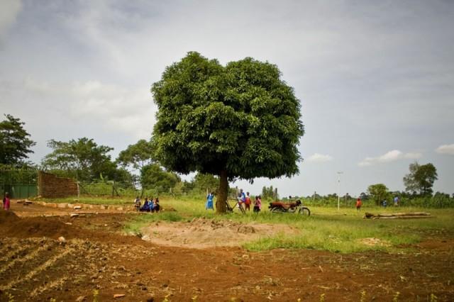 School Grounds, Central Uganda